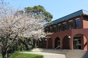 2015 桜 玄関
